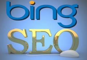 Bing SEO information